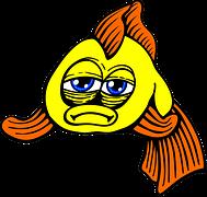 opstarten aquarium ziek visje