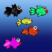 opstarten aquarium visjes