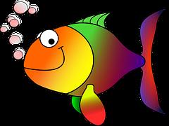 opstarten aquarium visje